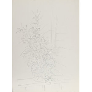 Eve Nethercott, Flowers, 45, Pencil Drawing
