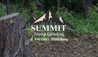 Large Oak Stump Grinding Project