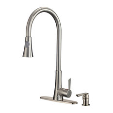 Dyconn Faucet Celtic TB001-A18BN Brushed Nickel Single Handle Pull-Out Dual Spra