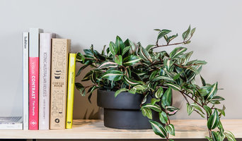 Designer Potted Faux Plants styled for today's contemporary urban interiors