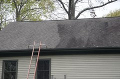Both Before And After Treating The Roof Didn T Lose Any Plants Or Gr I Do Have Gutters Downspouts Gave A Good Hosing Afterwards