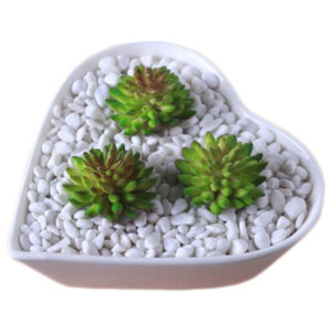 Onion Grass With Ceramic Pot - Beach Style - Indoor Pots And