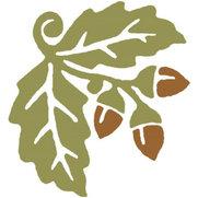 Linda Estrin Garden Design's photo