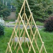 Bamboo Obelisk Trellis - 120cm