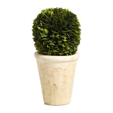 """10"""" Tall Preserved Boxwood Ball Potted Topiary"""