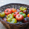 10 Delicious Heirloom Tomatoes to Grow This Summer