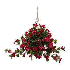 Bougainvillea Hanging Basket