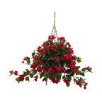 Bougainvillea Hanging Basket Uv Resistant, Indoor and Outdoor