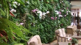 mur végétal avec des plantes vivantes