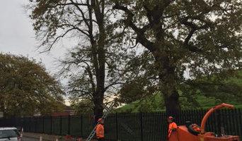 AA Tree Surgery