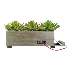 4-Port USB Charging Station Artificial Grass Succulent, Taupe