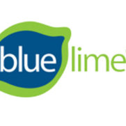 Blue Lime Home Design's photo