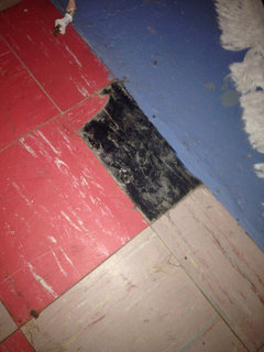 Asbestos tile what did you do with yours for Liquid lino floor paint