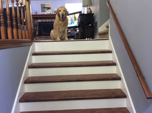 Stair Runner On Prefinished Laminate Stair Treads