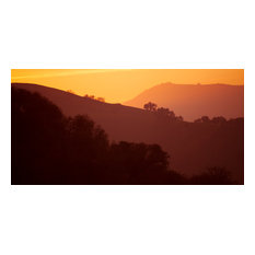 Golden California Canyons