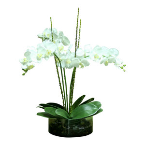 Waterlook White Orchids In Glass Spotted Leopard Vase Tropical Artificial Flower Arrangements By Distinctive Designs