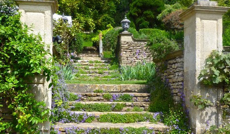 Creeping and Ground Cover Plants That Will Enhance Your Garden