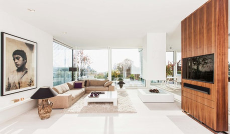 Houzz Tour: A Glass Penthouse With a Mountain View