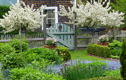 A Gorgeous Farmhouse Garden on Cape Ann Comes Into Bloom