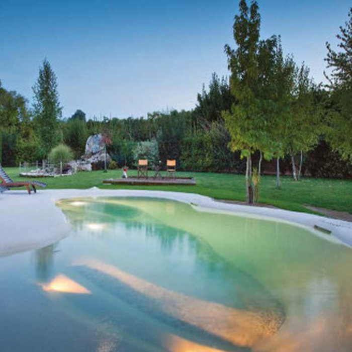 Beach Sculpted Biodesign Swimming Pools