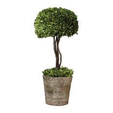 Tree Topiary Preserved Boxwood Planter