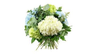 Florist Hammersmith