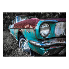 """Ford Mustang"" 8x10 Photography by Alix Collins"