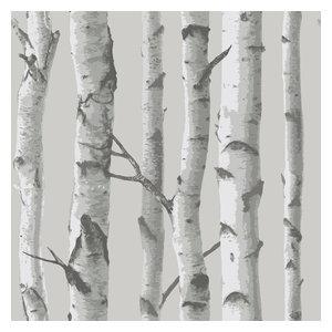 Mountain Birch Grey Peel and Stick Wallpaper