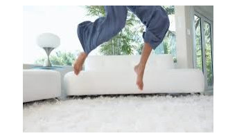 Esteamed Professional Carpet & Upholstery Cleaning