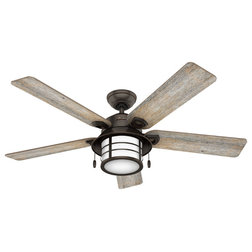 Beach Style Ceiling Fans by Buildcom