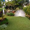 Guatemala Garden Tour: It