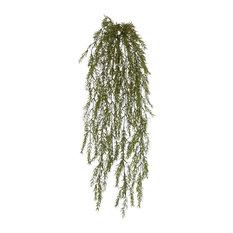 Springeri Sea Grass Vine X 15