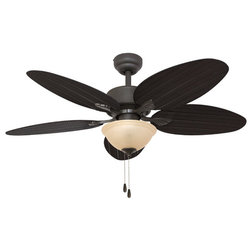 Traditional Ceiling Fans by Palm Coast Imports