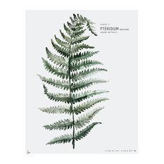 """Botanic Urban Plate 1, Fern"" Print, Large, 50 x 70 cm"