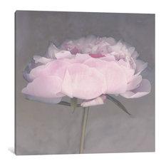 """Jolie"" Wrapped Canvas Art Print, 26x26x0.75"