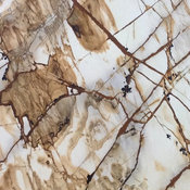 Stone World Quartzite Collection - Spiderman Brown