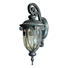 Viviana 1 Light Exterior Lighting in Oil Rubbed Bronze Finish - Oil Rubbed Bronz