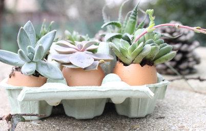 DIY : Des œufs à planter pour une déco de Pâques écolo