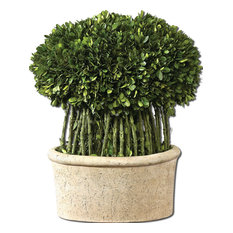 Willow Topiary Preserved Boxwood By Designer Constance Lael-Linyard
