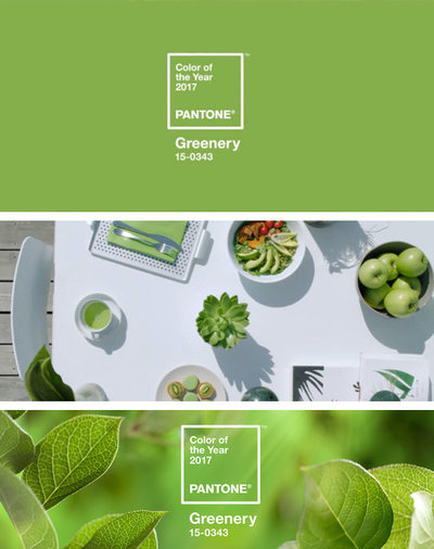 'Greenery' is Pantone's Colour for 2017