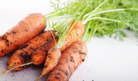 Un huerto en casa: Cómo cultivar zanahorias en el jardín