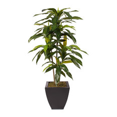 4ft Real Touch Dracaena Massangeana Tree in a Contemporary Metal Pot