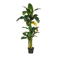 6 ft. Triple Stalk Banana Silk Tree