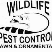 Foto de WIldlife Pest Control