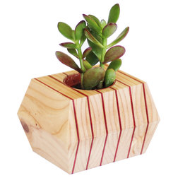 Contemporary Indoor Pots And Planters by Salemtown Board Co.
