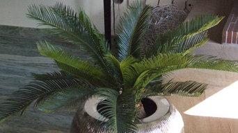 Officilia – hochwertige Kunstpflanzen Referenzen - Mülheim