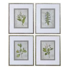 Stem Study Framed Prints - Natural