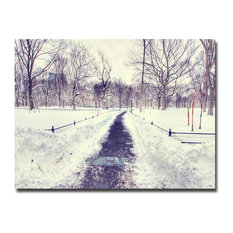 'The Snow Effect' Canvas Art by Ariane Moshayedi
