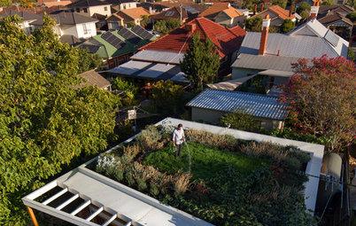 6 Australian Dwellings That Have Gone Green on Top