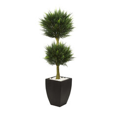 Cypress Topiary in Green with Black Pot